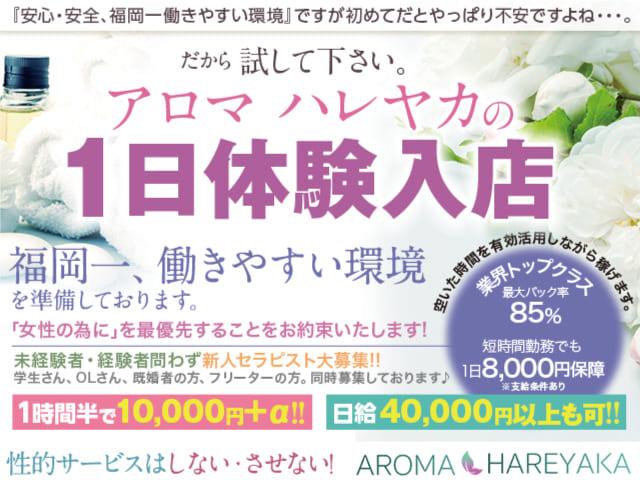 aroma hareyaka-アロマ ハレヤカ-