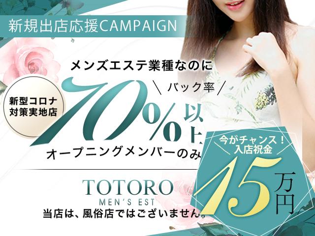 TOTORO-トトロ-